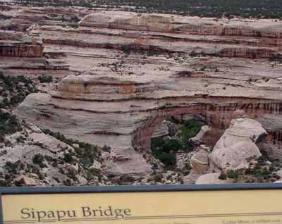 天然石橋國家保護區 (Natural Bridges National Monument) 